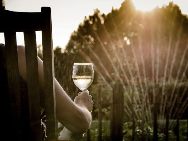 tips om je tuin klaar te maken voor de zomer