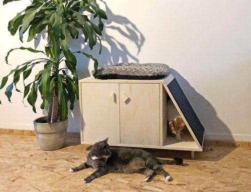 DIY: 3x Je eigen interieur pimpen