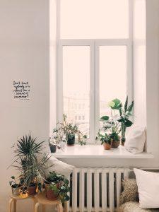 planten duurzame kamer