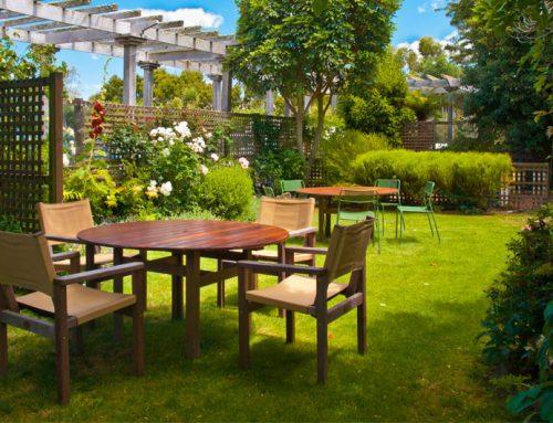 6 tips voor een nieuwe tuininrichting