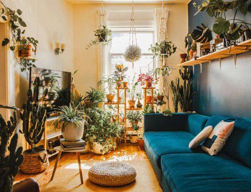 Bohemian interieur accessoires bij jou thuis